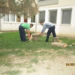Radna_akcija_6